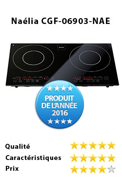 guide d'achat plaque induction